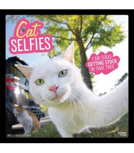 Selfies de chats 2020