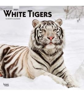Tigres blancs 2021