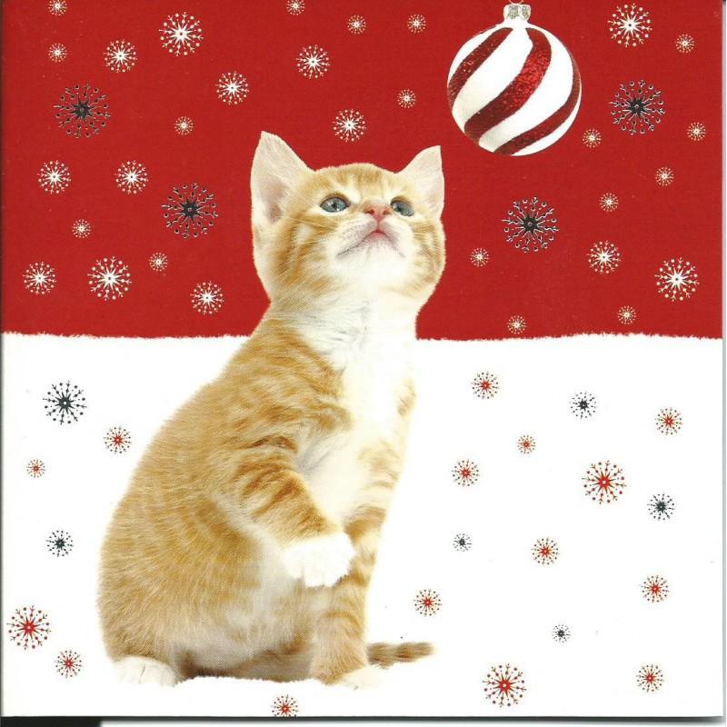 AnimalBazar : Série de 10 cartes postales (2 modèlesx5) Joyeux