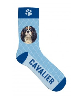 Chaussettes cavalier king Charles - taille 36/41