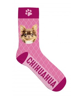Chaussettes chihuahua - taille 36/41