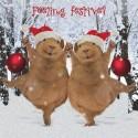 """10 Cartes de Noël """"cochons d'Inde"""" et leurs enveloppes"""