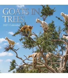 Calendrier Chèvres dans les arbres 2021