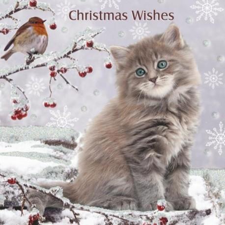 """10 Cartes Noël """"le chaton et l'oiseau"""" et leurs enveloppes"""