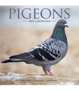 Pigeons 2021