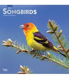Oiseaux chanteurs 2021