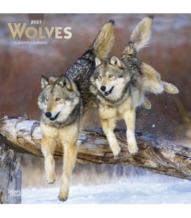 Calendrier loups 2021