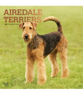 Airedale calendrier 2021