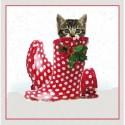 """10 Cartes Noël """"chat botté"""" et leurs enveloppes"""
