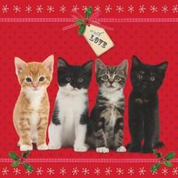 """10 Cartes Noël """"chatons de Noël"""" et leurs enveloppes"""