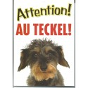 """Panneau """"Attention au teckel"""""""