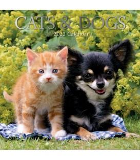 Chats et chiens 2022