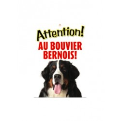 "Panneau ""Attention au bouvier bernois"""