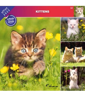 CHATONS 2022 - CALENDRIER AFFIXE