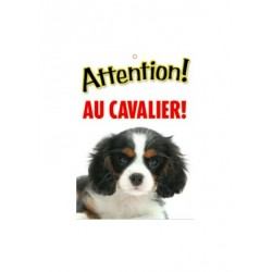 "Panneau ""Attention au cavalier King Charles"""
