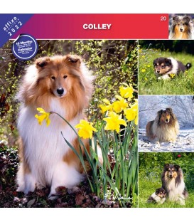 COLLEY 2022 - CALENDRIER AFFIXE
