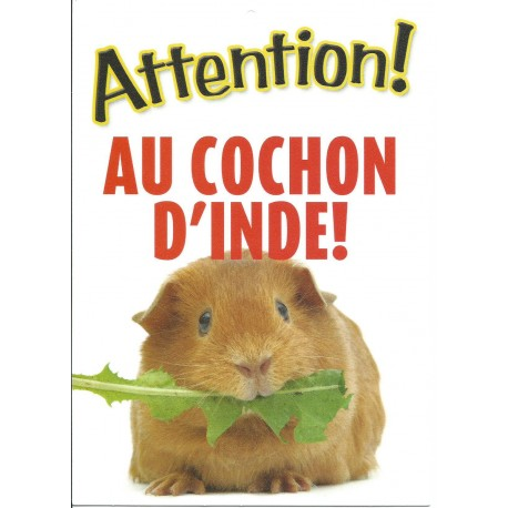 "Panneau ""Attention au cochon d'Inde"""