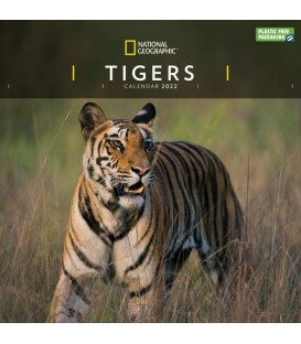 Calendriers Tigres 2022 - National Géographic
