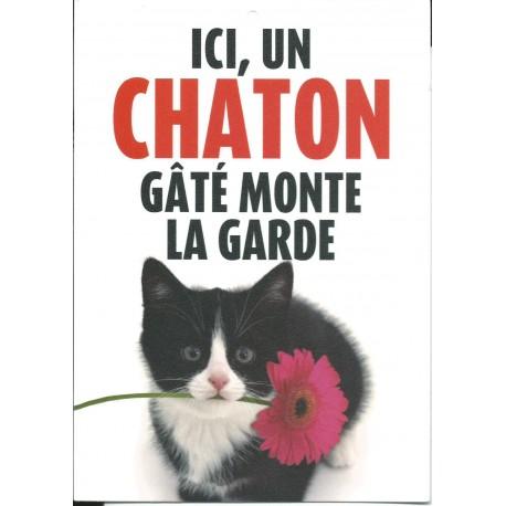 """Panneau """"Ici un chaton gâté monte la garde"""""""