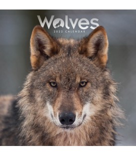 Mini calendrier loups 2022