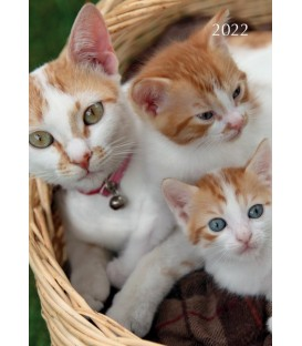 AGENDA CHATTES ET CHATONS 2022