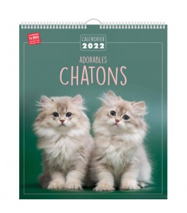 CALENDRIER 2022 TENDRES CHATONS