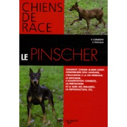 Le pinscher - collection chiens de race
