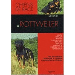 Le rottweiler-collection chiens de race