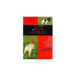 Le setter anglais - collection chiens de race
