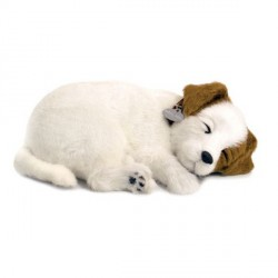 Peluche Perfect Pezzzz Jack Russell terrier