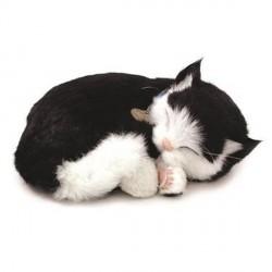 Peluche Perfect Petzzzz Chat européen noir et blanc